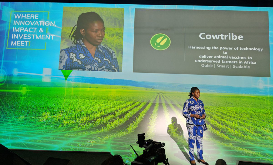 Meet Cowtribe, the startup aiming to solve Africa's animal vaccination problem