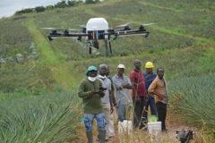 1115-DRONE-GHANA-790x527