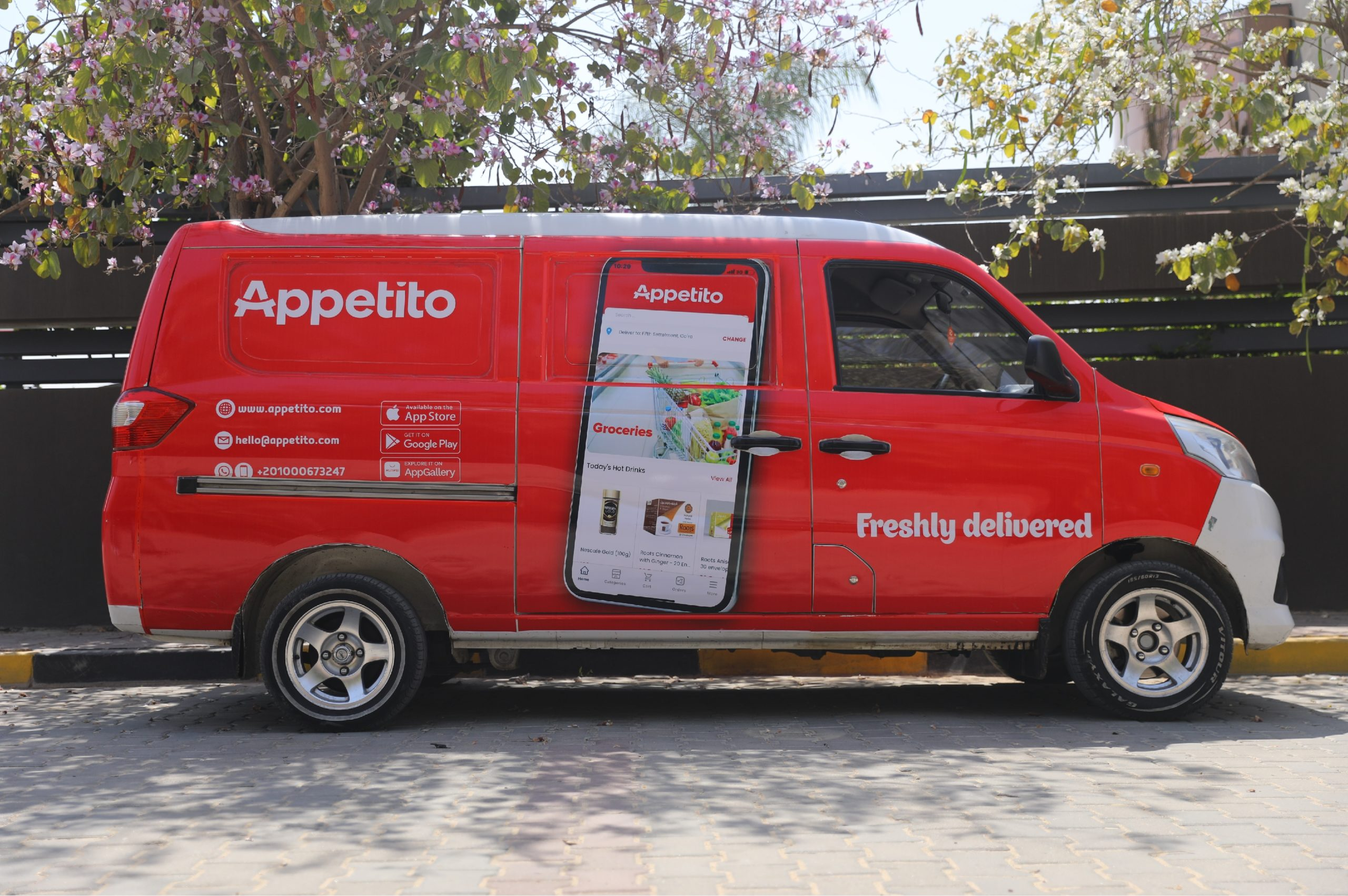 appetito_grocery_delivery_startup_egypt_cairo